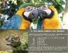 Il 10% degli animali del mondo
