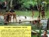 Chi abita l'Amazzonia: i Nativi